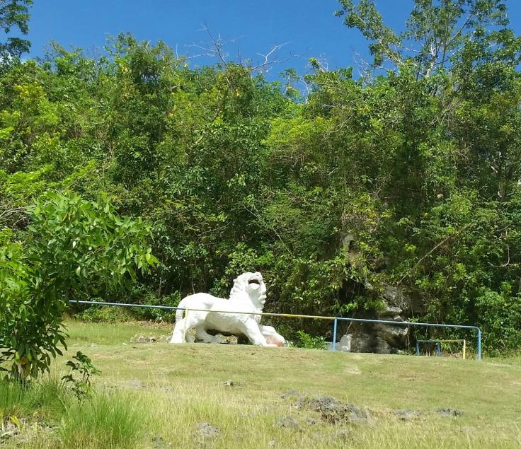 Gun Hill Lion